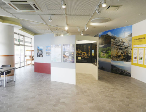 HEXAGON PRISM MUSEUM
